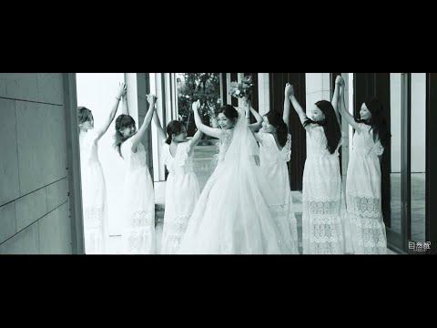 Fan & Minnie Wedding SDE MV(婚禮快剪快播-台中林酒店)