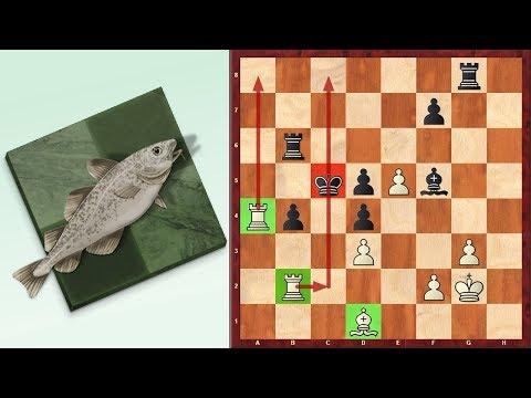 Unbelievable! Leela Chess Zero Blunders Mate In 5 vs. Stockfish 8