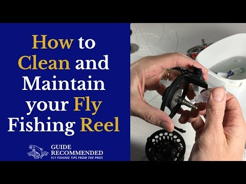 How To Clean And Maintain A Fly Reel