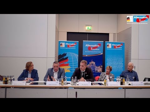 Neueste Erkenntnisse im Fall Anis Amri! - Petr Bystron, Beatrix von Storch und Stefan Schubert