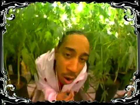 Ludacris - Blueberry Yum Yum (Smoke Weed Everyday)