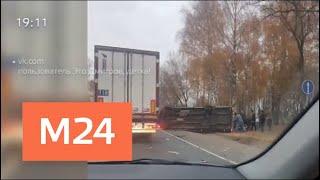 Смотреть видео Четыре человека погибли в ДТП в Подмосковье - Москва 24 онлайн