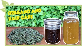 Science of OREGANO for natural hair - DISINFECTANT