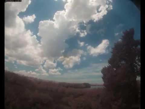 Cloud Camera 2016-08-12: Pasco Energy and Marine Center