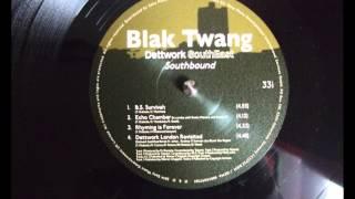 Blak Twang - Echo Chamber (Ft. Roots Manuva, Seanie T)