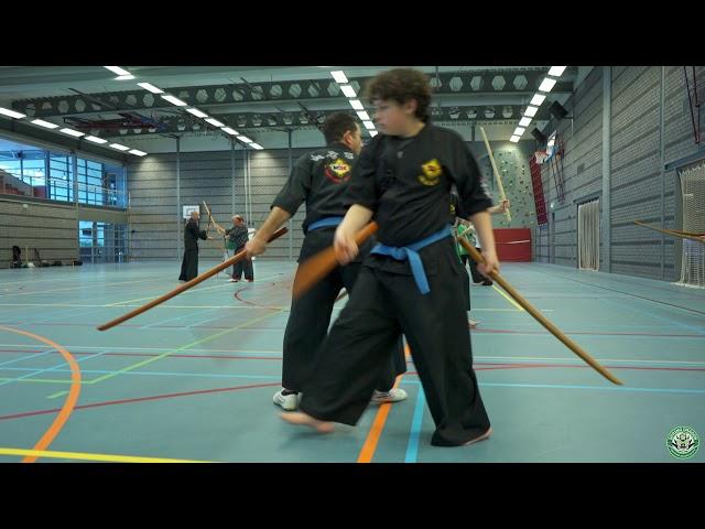 Double sword skills - Dutch Haedong Kumdo workshops 2018 with Grand Master Kim, Jeong Seong - Day 2