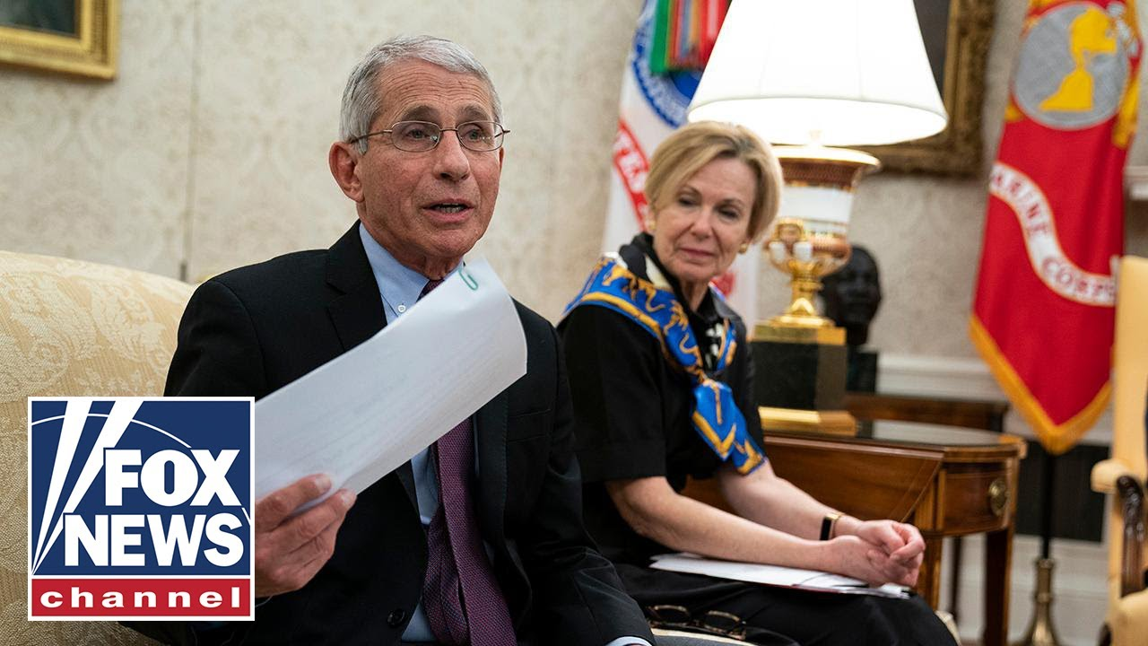 What to expect from Dr. Fauci's upcoming Senate testimony