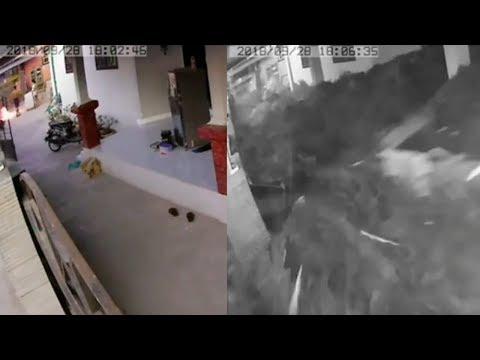 Viral Video Detik-detik Gempa dan Tsunami di Kota Palu yang Terekam CCTV