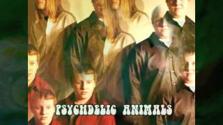 The Psychedelic Animals - Intersteller Overdrive - Pink Floyd Cover