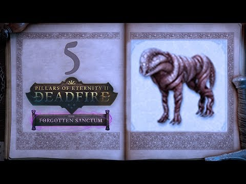 Sorting Out The Collections - Pillars of Eternity 2: Forgotten