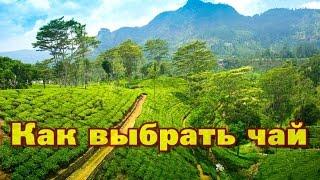 Что привезти из Шри Ланки и как выбрать хороший чай?(, 2014-10-31T13:06:54.000Z)
