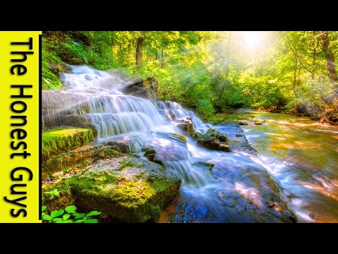 8 HOURS Relaxing Nature Sounds-Sleep-Study-Meditation-Spa Water Sounds Bird Song