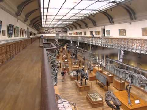 Museum of Natural History in Paris, France