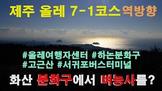 [올레7-1코스 역방향] 제주올레여행자숙소 - 고근산-…