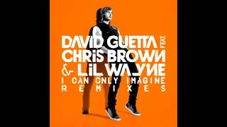 David Guetta ft  Chris Brown  and  Lil Wayne   I Can Only Imagine Daddy