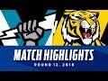 Port Adelaide v Richmond Highlights   Round 12, 2018   AFL