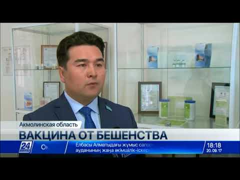 Новую вакцину от бешенства разрабатывают степногорские ученые