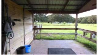 3 Bedroom Plant City Home 30+ Acres W/ Horse Barn