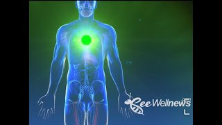 CHAKRAS SOUNDS BWN 2K MPEG 4