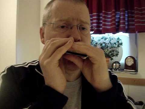 Boom Boom - John Lee Hooker blues harmonica