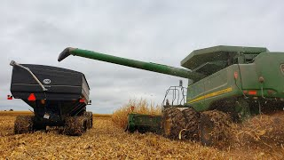 Our Last Day of Harvest 2019