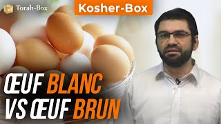 Kosher-Box : Œuf blanc Vs Œuf brun