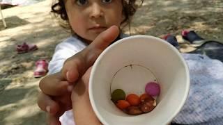 Ayşe Ebrarın Renkli Bonibonlarını Karınca Yemiş😭 For Kids Video