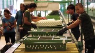 Natural latex mattress and pillow - Introduction