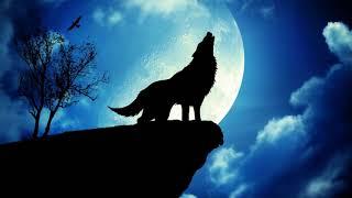 Gambar cover Wolf Howling Ringtone | Free Ringtones Download