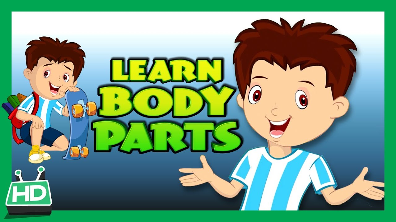 Body Parts For Kids Learning