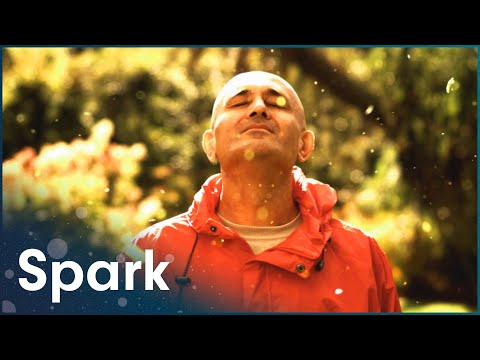 The Secrets of Quantum Physics : Let There Be Life (Full Physics Documentary) | Spark