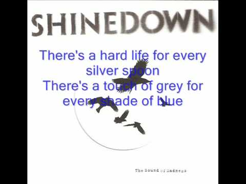 Shinedown - What A Shame (lyrics)