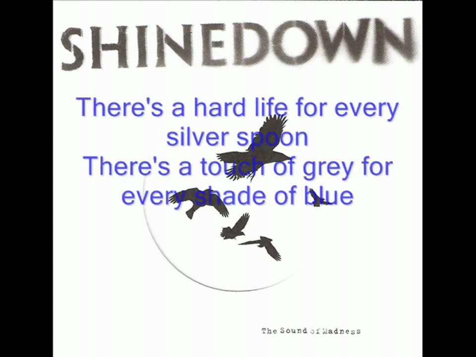 Shinedown - What A Shame (lyrics) - YouTube