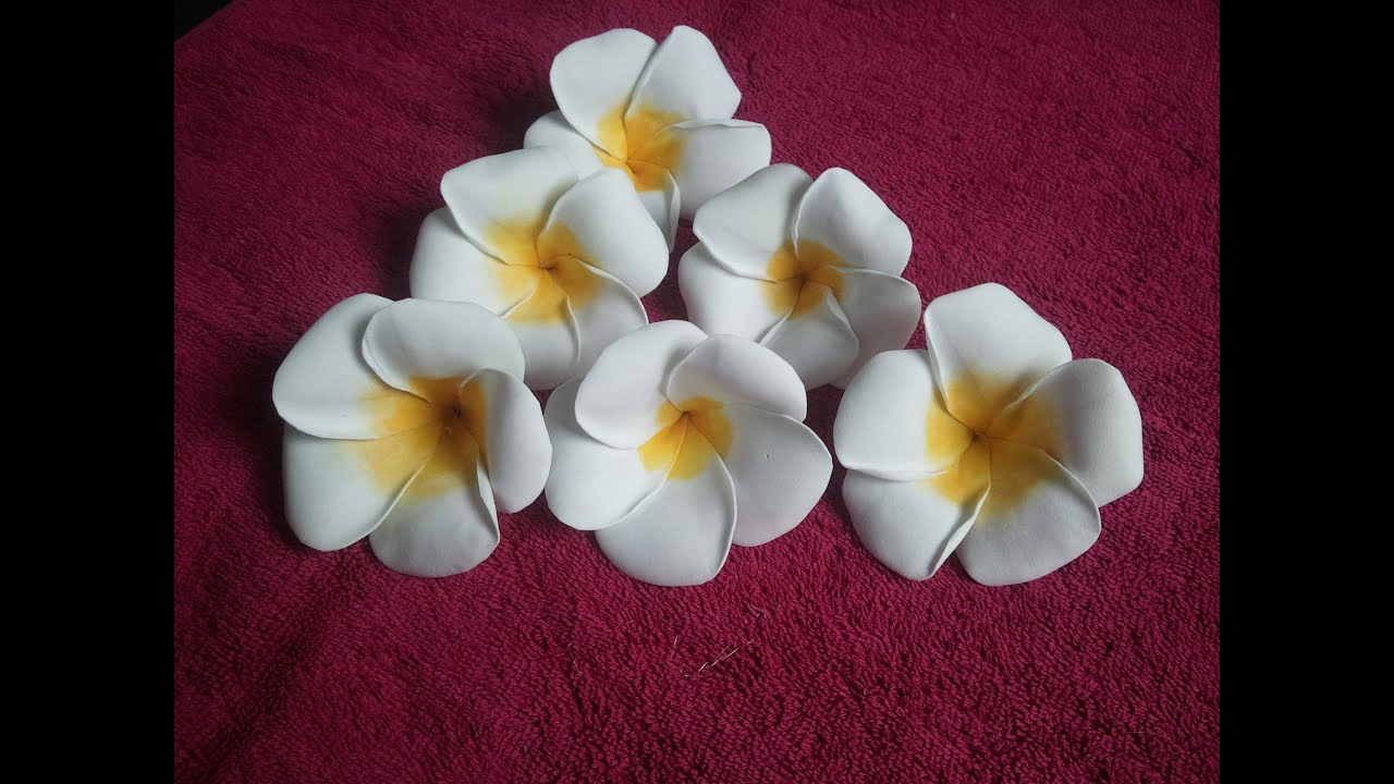 Learn how to make foam plumeria flower youtube izmirmasajfo