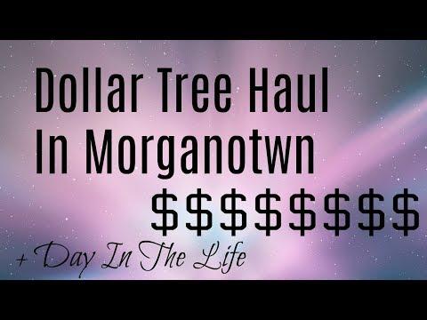 DITL STILL IN MORGANTOWN + Dollar Tree Haul