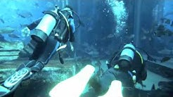 Diving the Lost City of Atlantis