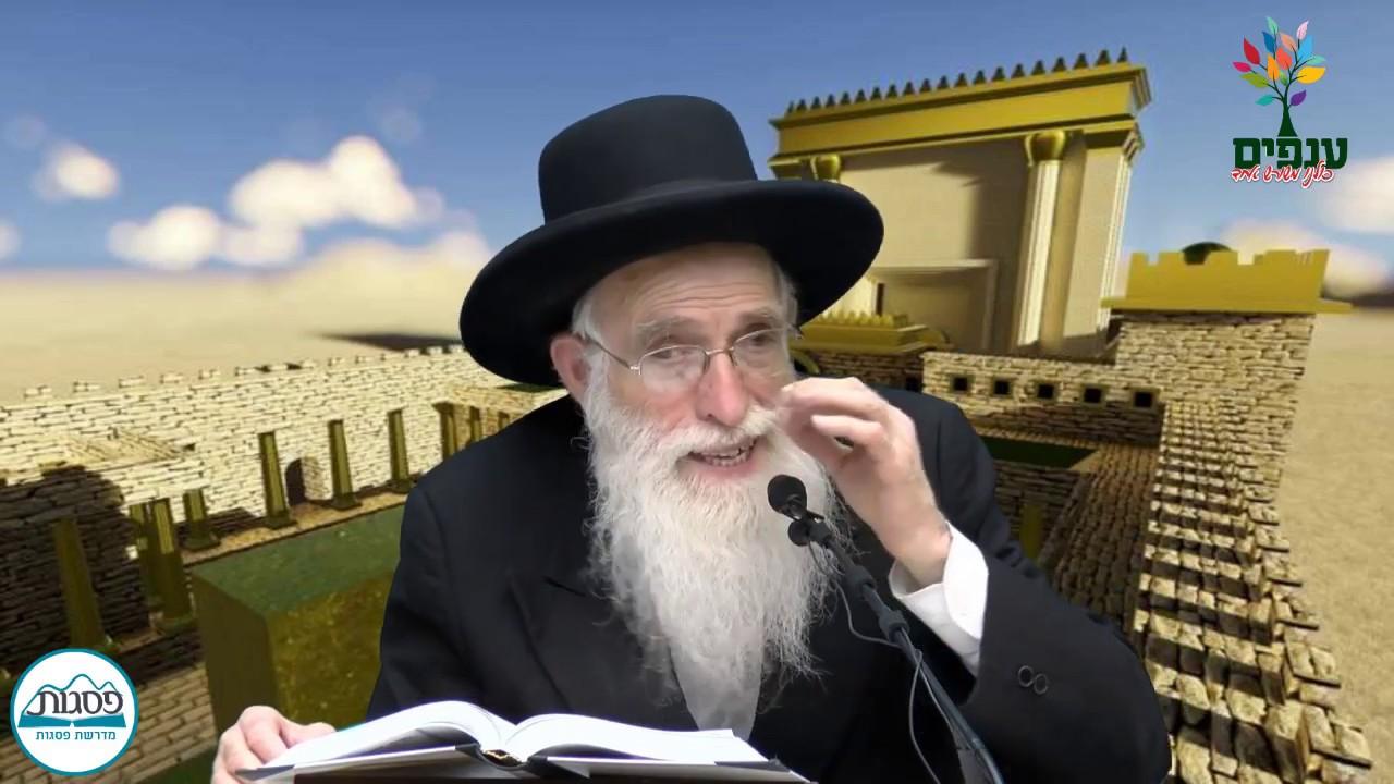 פרשת תצווה - הרב יהודה יוספי HD - שידור חי