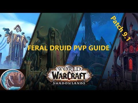 Ферал Друид ПвП Гайд World of Warcraft 9.1