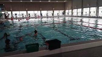 Vesisankarit Lappeenrannan uimahallissa