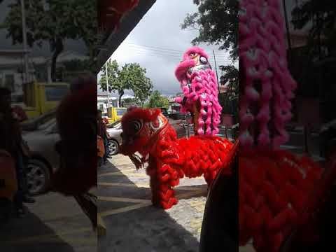 Labuan Lion Dance Feb 2018