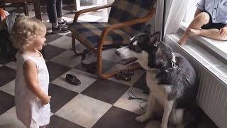 ❤  ВЛОГДетская фотосессия для журнала.Эмилия позирует перед камерой. Собаки хаски.❤Sweet Emily❤