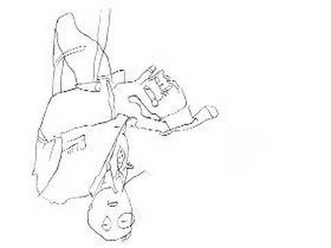 Duck Studios Maureen Selwood Drawing Lesson