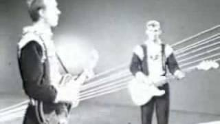 The Spotnicks Johnny Guitar