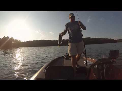 Bass Fishing Around Baitfish At Lake Hamilton In Hot Springs AR
