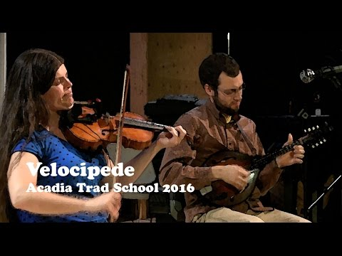 Velocipede  The Shaskeen Jig, The Humours of Glin  Acadia Trad School 2016