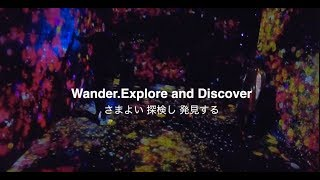 チームラボボーダレス(お台場)  #teamlabborderless 「MORI Building DIGITAL ART MUSEUM: EPSON teamLab Borderless」