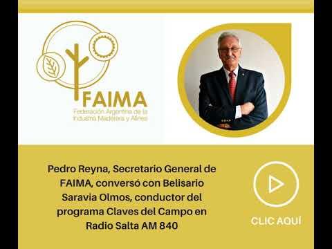 Pedro Reyna comentó sobre el 137° Congreso Maderero en Radio Salta