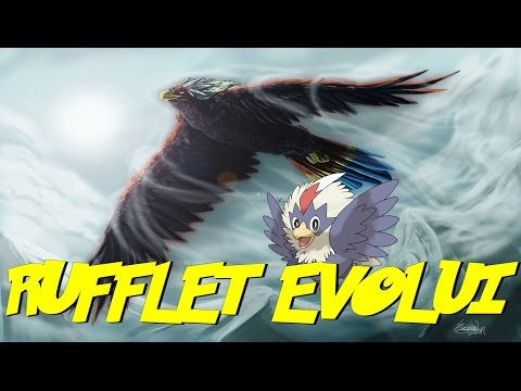 My Rufflet Evolving In Pokemon Light Platinum Doovi