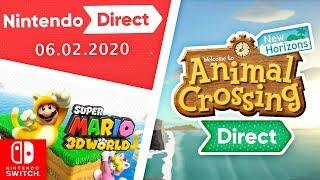 2 Nintendo Directs im FEBRUAR Switch Pro STATEMENT Super Mario 3D World Switch Port and MEHR Leaks