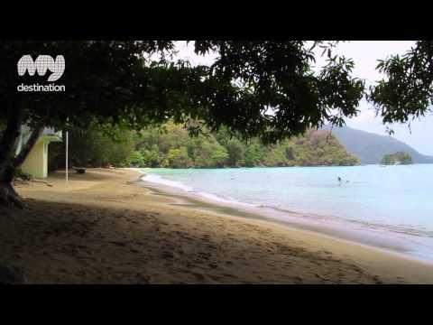 The Beaches of Tobago